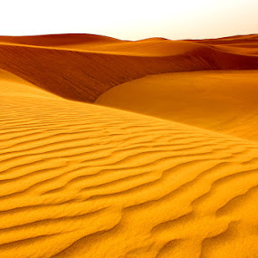 Emirates' Golden Sand by Glory Reaglobe - Landscapes Deserts ( sand, yellow, golden )
