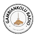 Gambiankolu Radio Icon