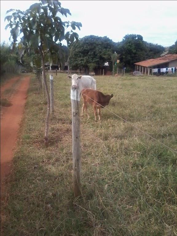 Chácara rural à venda, Vale do Sol, Uberaba.