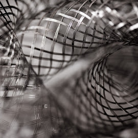 Wire no less by Max Cardoso - Abstract Macro