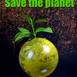 by Dipali S - Typography Captioned Photos ( plant, planet, nature, trees, earth, globe )