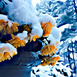 Snowed Upon by Irina Aspinall - Digital Art Things ( orange, winter, colors, snow, flowers )