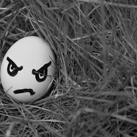 Angry Egg by Irmantas Baltrusaitis - Illustration Food & Drink ( black and white, grass, white, angry, egg, emotion )