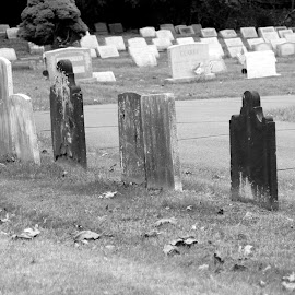 Long, long time ago by Janet Smothers - City,  Street & Park  Cemeteries