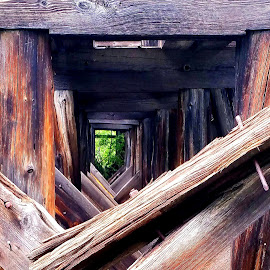 Looking through an old railway by Allison Buist - Artistic Objects Other Objects