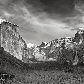 Yosemite winter  by Cody Hoagland - Landscapes Mountains & Hills ( b&w, yosemite )