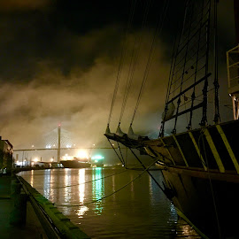 Misty Savannah by Dave Feldkamp - Landscapes Weather ( savannah, tall ship, ship, georgia, savannah georgia )