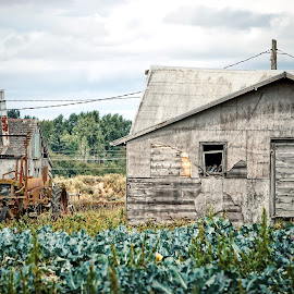 Growing old  by Todd Reynolds - Buildings & Architecture Decaying & Abandoned