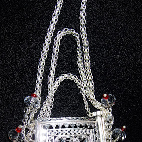 Silver purse by Aamir Soomro - Artistic Objects Clothing & Accessories ( macro, red, purse, details, wedding, item, silver, black )