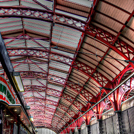 Copenhagen Station~ by Karen McKenzie McAdoo - Transportation Railway Tracks