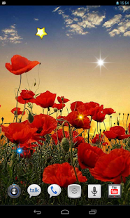 Poppy Magic Flowers LWP - screenshot