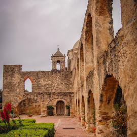 Mission San Jose by Robert Coffey - Buildings & Architecture Public & Historical ( walls, hedges, church, mission, texas, arches, san antonio, belfry )