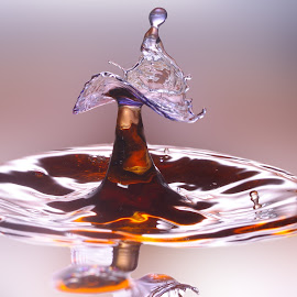 Splash by Nirmal Kumar - Abstract Water Drops & Splashes