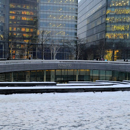 The Scoop in the Snow by DJ Cockburn - City,  Street & Park  Street Scenes ( office, building, uk, more london, southwark, london bridge city, architecture, cityscape, street scene, city, urban, england, winter, skyscraper, tower block, cold, london, woman, snow, glass, the scoop at more london )