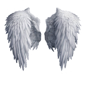 KNOW YOUR ANGELS