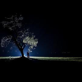 Night tree by Lood Goosen (LWG Photo) - Wedding Bride & Groom ( wedding photography, wedding photographers, lood goosen, brides, weddingphotographer, #wedding#weddinginspiration#weddingdecor#weddingdresses#brid, bhride and groom, bride grooms, lwg photo, wedding day, wedding, weddings, wedding photographer, bride and groom, bride, groom, grooms, bride groom )