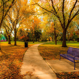 Edmonton City Park by Joseph Law - City,  Street & Park  City Parks