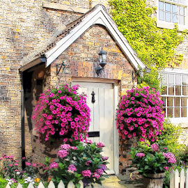 Hanging baskets by Vicki Clemerson - Buildings & Architecture Homes ( fence, hanging basket, house, flowers, porch, flower basket, petunias )