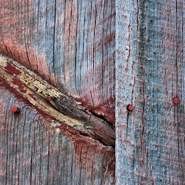 Slash of color. by Gale Perry - Abstract Patterns ( patterns, red, wood, barn, blue, nails.,  )