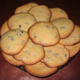 Raisin Cookies  by Abbey Gatto - Food & Drink Cooking & Baking ( raisin cookies, baking, cookies, close up, swets, dessert )