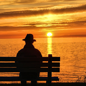 Just Sitting and Watching by Jo Gonzalez - Landscapes Sunsets & Sunrises ( water., bench, colorful sun set, man, , silhouette, Free, Freedom, Inspire, Inspiring, Inspirational, Places, People, Emotion )