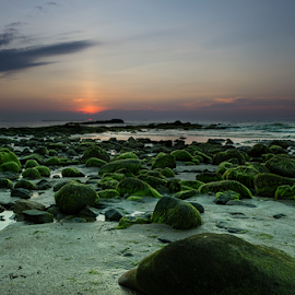 green rock by Rob De Eduardo - Landscapes Sunsets & Sunrises ( beaches, sunset, long exposure, landscape, rocks )