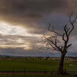 Ecclefechan by James Johnstone - Landscapes Prairies, Meadows & Fields ( ecclefechan )