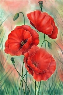 Painted poppies - screenshot
