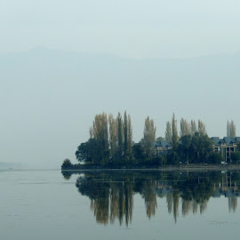 Dal Lake, India by Indrarup Saha - Landscapes Travel ( water, reflection, dal lake, tree, nature, kashmir, lake, india, landscape )