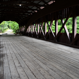 Tunnel Vision by Liz Rosas - Transportation Automobiles ( new hampshire, maine, forest, creek, covered bridge, woods, river, crossing )