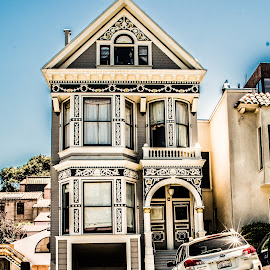 Painted Lady by Richard Michael Lingo - Buildings & Architecture Homes ( painted lady, california, architecture, homes, san francisco )
