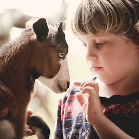 Little Nose by Annamarie Dearr - Babies & Children Children Candids ( love, goats, animals, sweet, farms, farm life, lifestyle, outdoors, adorable, kids, cute, #GARYFONGDRAMATICLIGHT, #WTFBOBDAVIS )