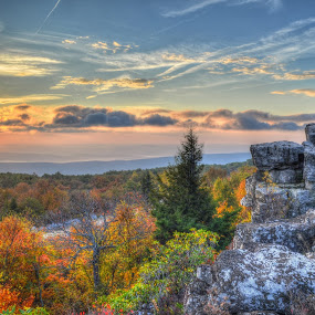 Fall Sunrise by James Reil - Landscapes Mountains & Hills ( wilderness, hdr, west virginia, foliage, fall, dolly sods, sunrise )