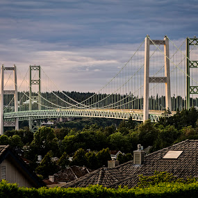 Tacoma Narrows by Scott Wood - Buildings & Architecture Bridges & Suspended Structures ( washington, tacoma, d600, night, nikon,  )