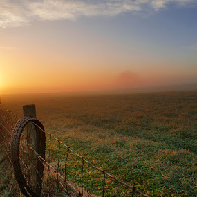 Country Morning by Aaron Shaver - Landscapes Sunsets & Sunrises ( clouds, mood, landscape, morning, sun, tire, field, fence, sky, nature, fog, sunrise, light,  )