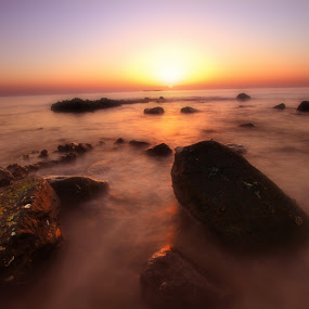 by Ronald Romero - Landscapes Waterscapes