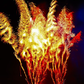 Fizzle by Mike Mills - Public Holidays July 4th ( holiday, lights, abstract, fireworks, celebrate, fire )