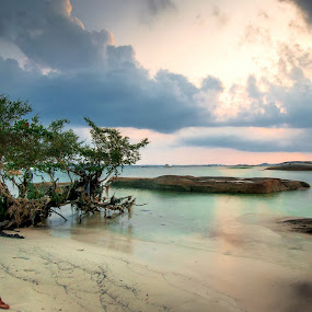 Eden by Fabianus Duddy - Landscapes Beaches