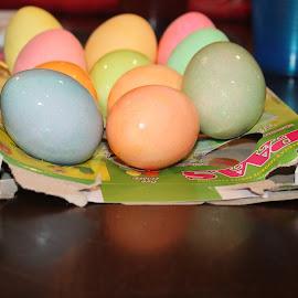 Easter Eggs by Sandy Stevens Krassinger - Public Holidays Easter ( easter eggs, orange, pink, green, blue, yellow, colored eggs )