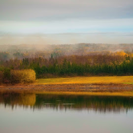 Misty Morning by Rita Taylor - Landscapes Waterscapes ( water, fog, trees, morning, mist )