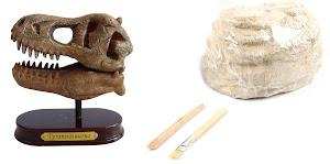 """Юный Археолог """"В Поисках"""" Головы Большого Динозавра"""