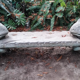 Frog Bench by Gail Marsella - Nature Up Close Rock & Stone ( bench, frog, green, statues, san diego botanical garden )