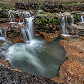 Tiny yet beautiful by Andy Pariat - Landscapes Waterscapes