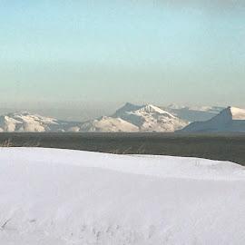 Winter  by Bjarklind Þór - Instagram & Mobile Instagram ( iceland )
