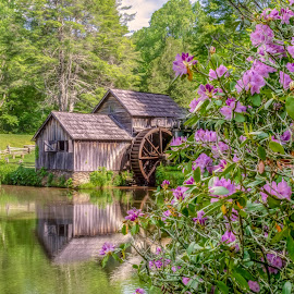Mabry Mill in Spring by RomanDA Photography - Buildings & Architecture Other Exteriors ( mountains, reflection, water, mill )