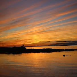 Pink Sunset  by Madeline Lindsay - Landscapes Sunsets & Sunrises ( sky, pink sky, bright, sunset, harbour, ocean, sun )