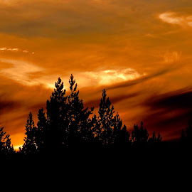Fire in the sky by Alf Winnaess - Uncategorized All Uncategorized