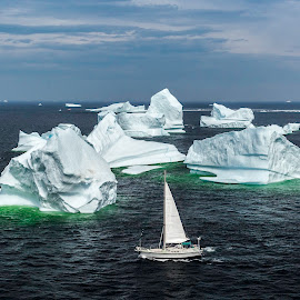 Mariner's Dream by Julian Earle - Landscapes Travel ( water, iceberg, canada, newfoundland, tourism, sailboat, twillingate )
