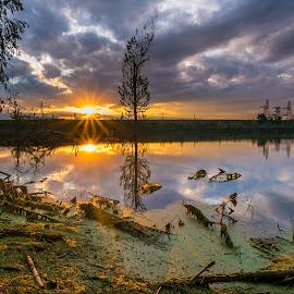 last sunset by Cornelius D - Landscapes Sunsets & Sunrises