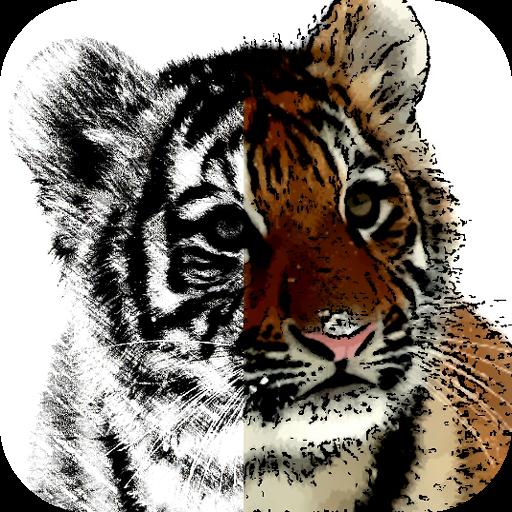 Sketch & Cartoon (app)